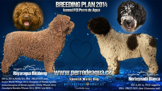 breeding plan