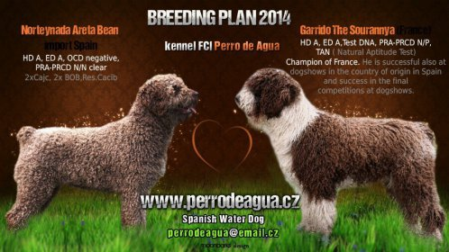 Areta+Garrido breeding plan